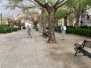 Imagen Desinfeccion Parque